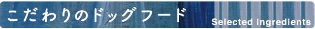 head-kodawari